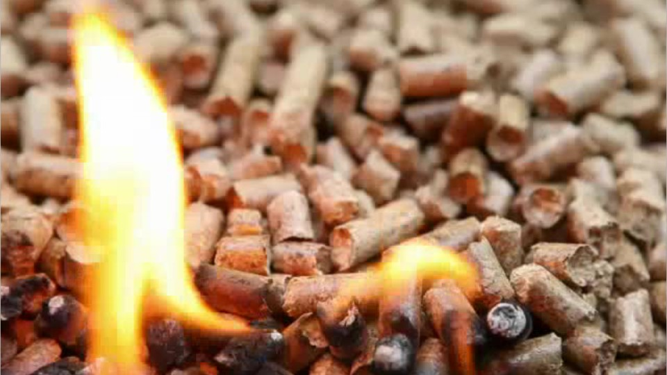 biofule pellets on fire
