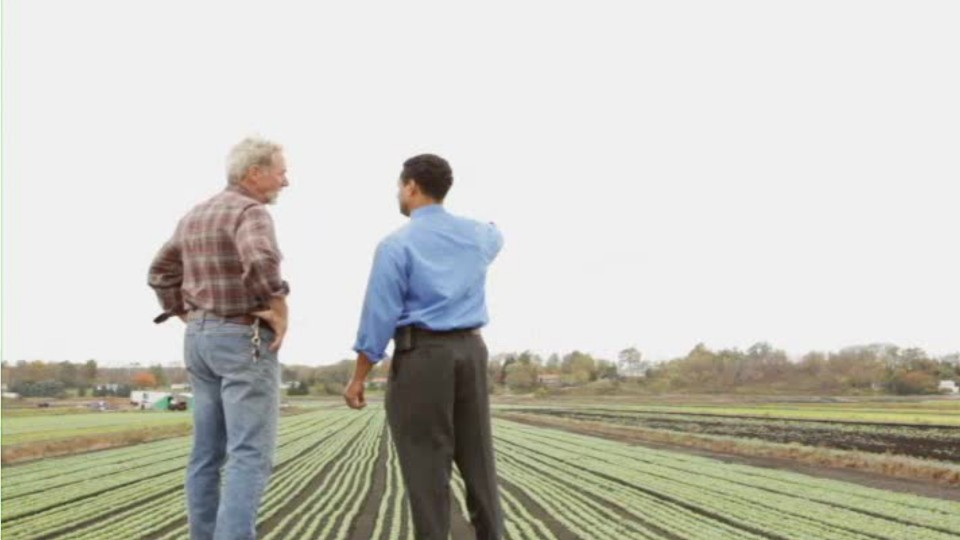 farmer and business man talking while looking at a field of growing crops