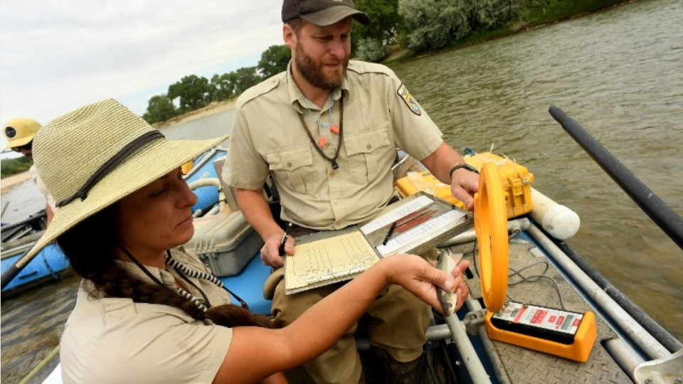 woman and man in a boat measuring a fish size and recording data